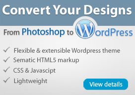 Custom WordPress Theme Design Services