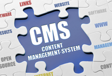 Web Content Management Service