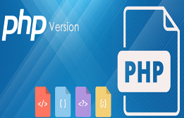 What is the difference between these two PHP versions?